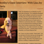 Bentley's Guest Interview with Lisa Jey Davis